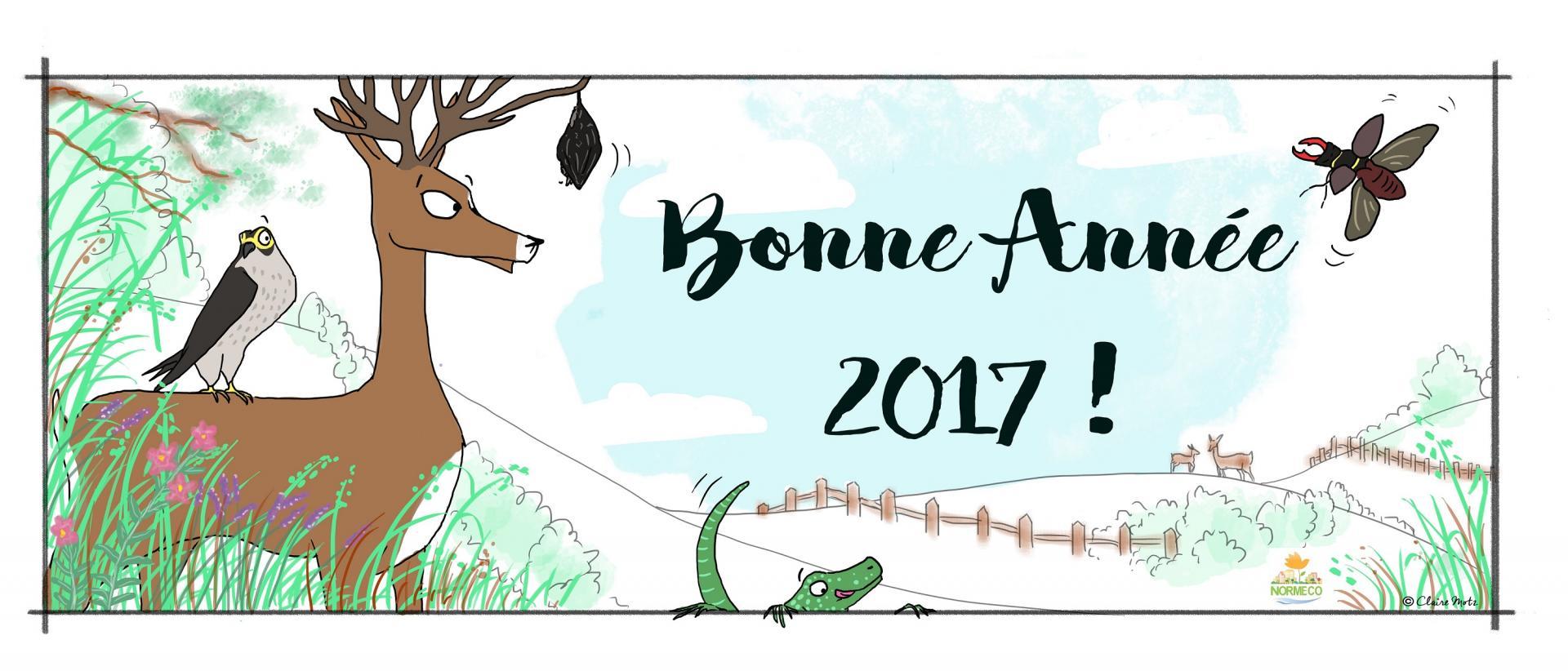 NORMECO VOUS SOUHAITE UNE BELLE ANNEE 2017 !