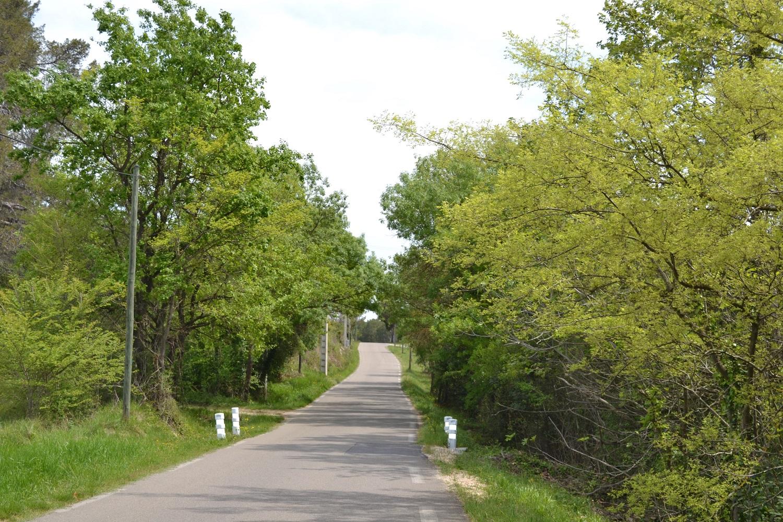 Corridor vert